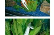 Accessori per acquario