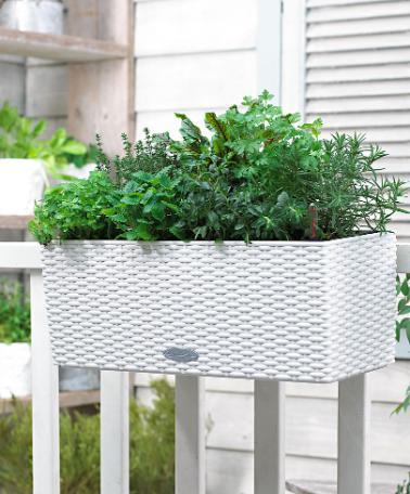 Fioriere da balcone idee green - Porta fioriere da balcone ...