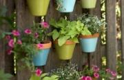 Giardini per interni