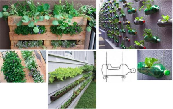 Pallet giardino verticale pompa depressione - Giardino verticale fai da te ...