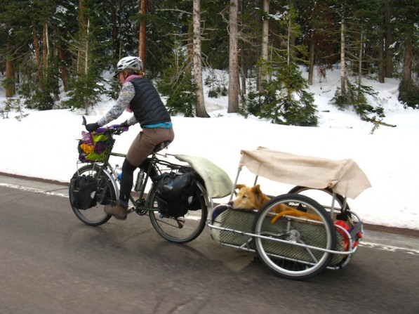 Large Dog Carts For Bicycle