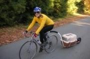 Rimorchi per cani in bici