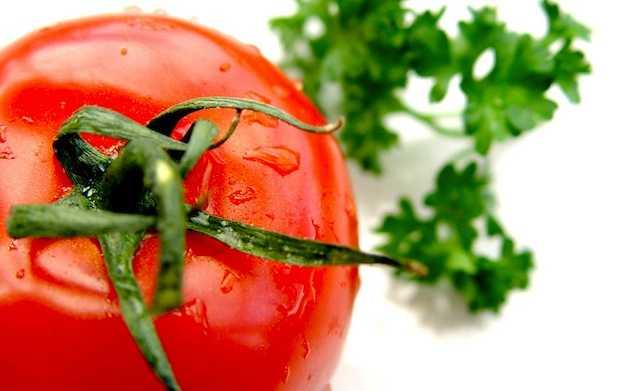 Come coltivare pomodori idee green for Piante pomodori in vaso