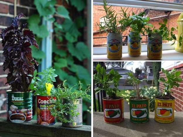 Come coltivare un orto sul balcone di casa idee green for Semina basilico in vaso