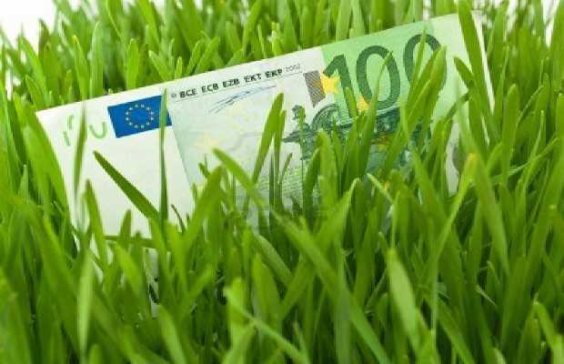 Una banconota in mezzo all'erba