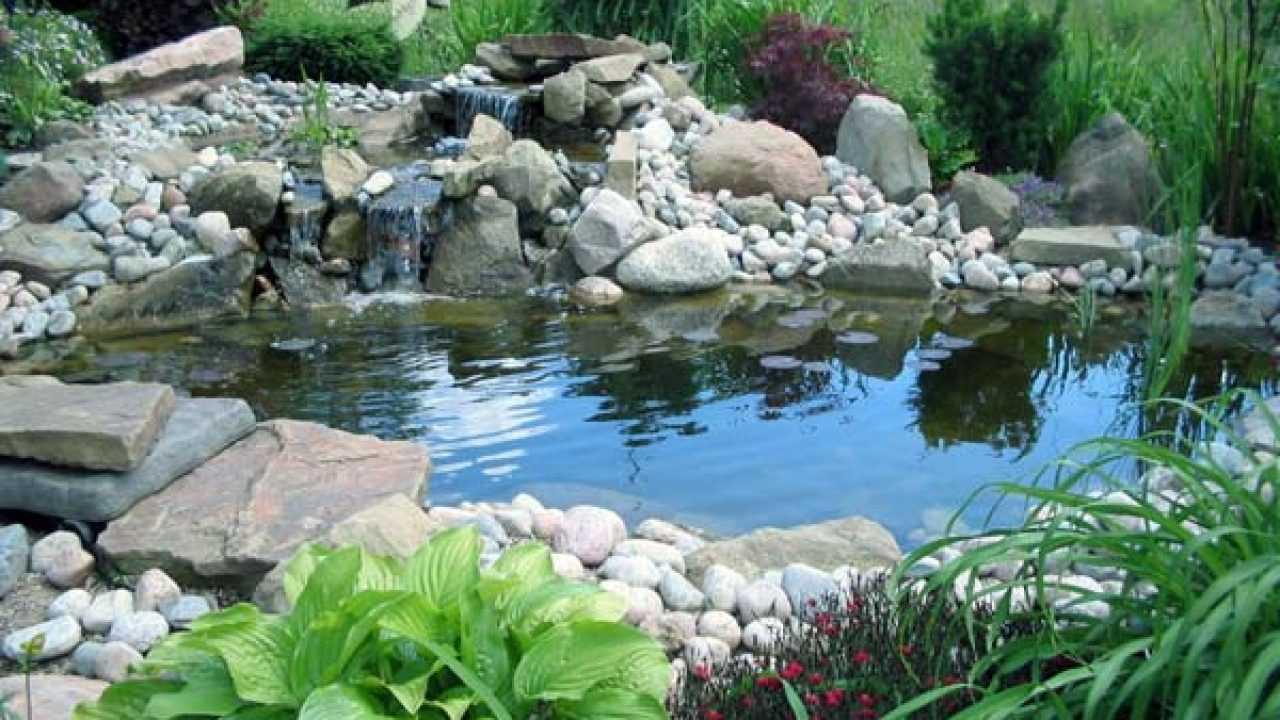Telo Per Laghetto Da Giardino come costruire un laghetto da giardino - idee green