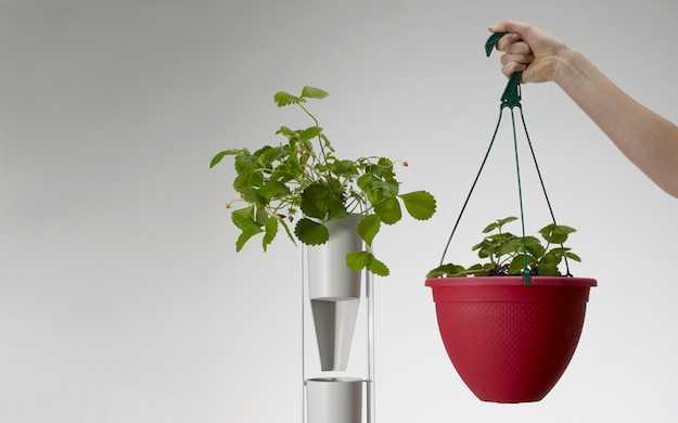 Windowfarms il giardino verticale idee green - Giardino verticale in casa ...