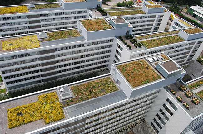 Green roof il giardino sul tetto idee green - Giardino sul tetto ...