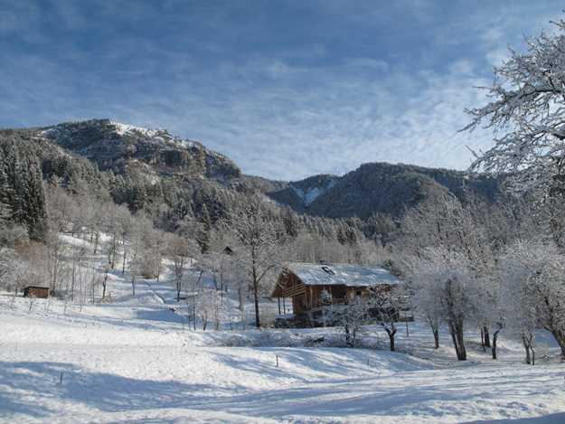 Casa di legno nella neve