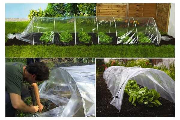 Come costruire una serra tunnel idee green - Costruire una serra in casa ...