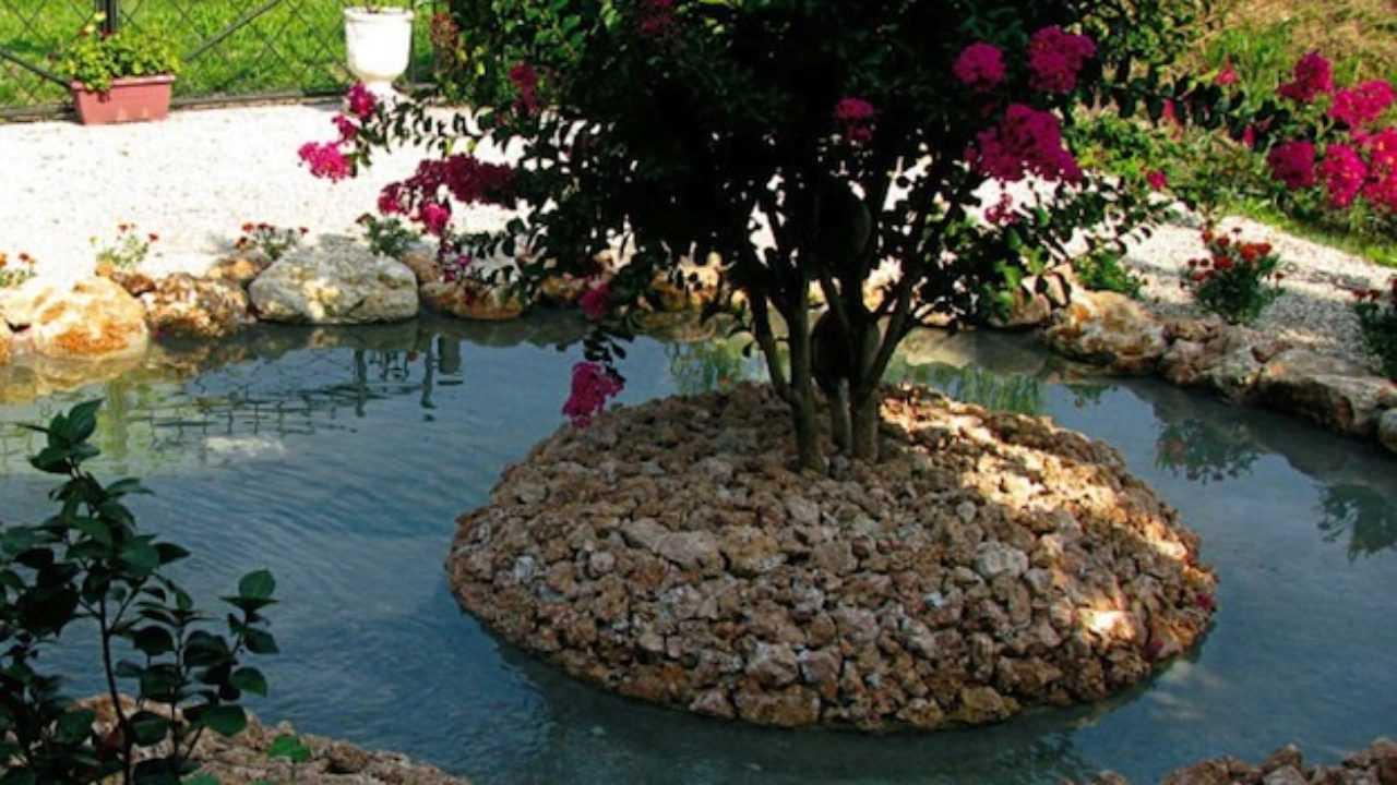 Telo Per Laghetto Da Giardino la realizzazione del laghetto da giardino - idee green