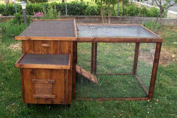 Pollaio-recinto per galline