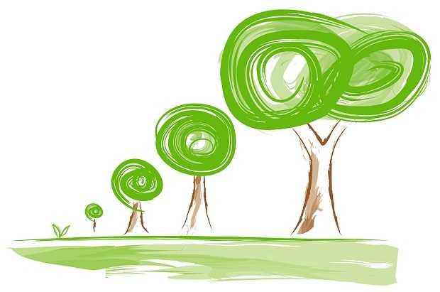 #Meda: Implementare il verde urbano piantando un albero per ogni nuovo nato è legge. Ma quanti comuni vi adempiono? (2)
