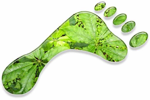 Logo della carboon footprint