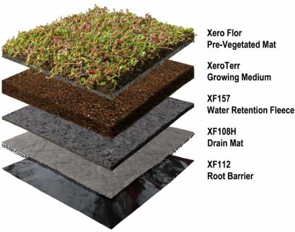 Green Roof Tetto Verde Idee Green