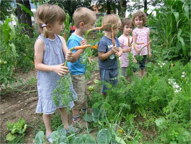 Bambini a lezione di orto