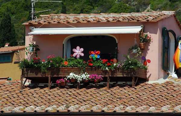Fiori da balcone idee green for Piante sempreverdi da balcone