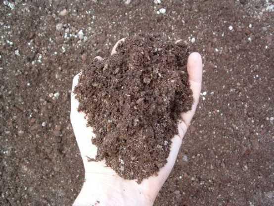 Come rigenerare la terra dei vasi