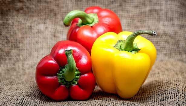 Coltivare il peperone