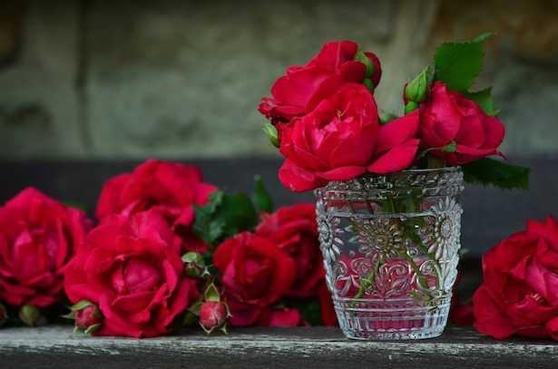 come mantenere fiori recisi