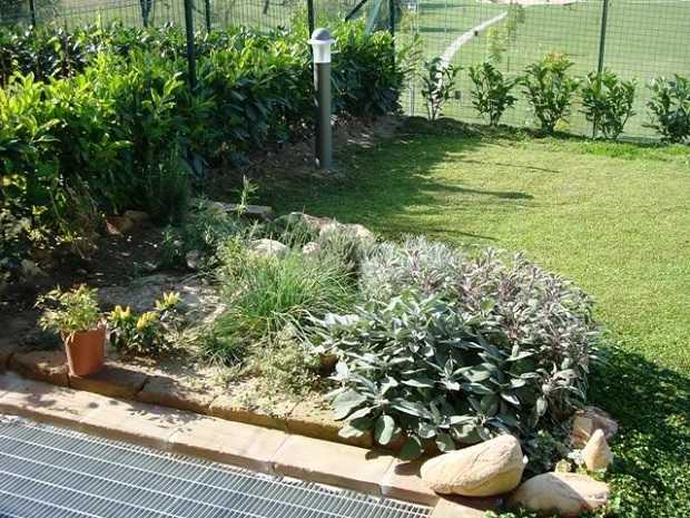 Erbe aromatiche in giardino idee green - Idee per giardini di casa ...