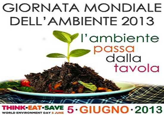 Manifesto della Giornata Mondiale dell'Ambiente 2013