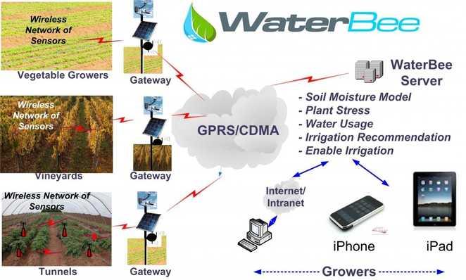 Waterbee il sistema di irrigazione automatico idee green for Sistema di irrigazione automatico