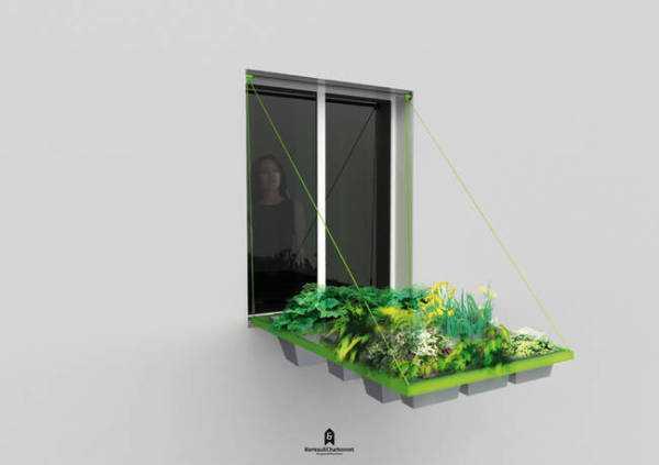 Come coltivare un orto sul davanzale della finestra idee - Fioriere per davanzale finestra ...