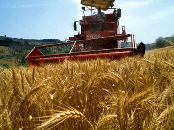 agricoltura-italiana