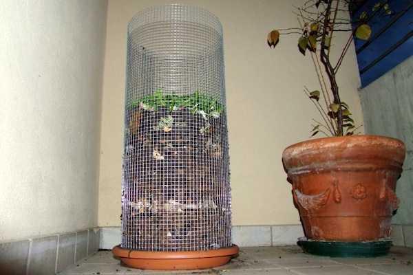 Compostaggio domestico sul terrazzo - Idee Green