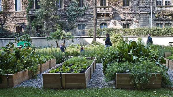 orti urbani e dintorni idee green