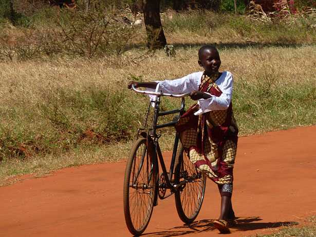 Safari bicicletta