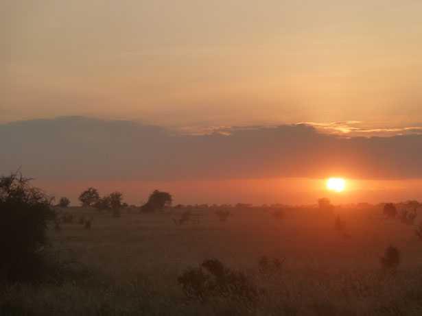 Safari tramonto