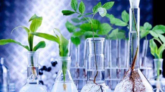 agricoltura microbi