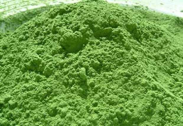 alga-spirulina