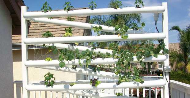 Soluzioni per allestire un orto sul balcone idee green - Creare un giardino sul balcone ...