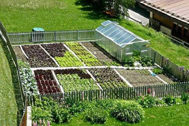 Come coltivare l 39 orto idee green - L orto in giardino ...