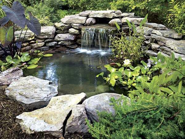 stagno in giardino idee green ForStagno Giardino