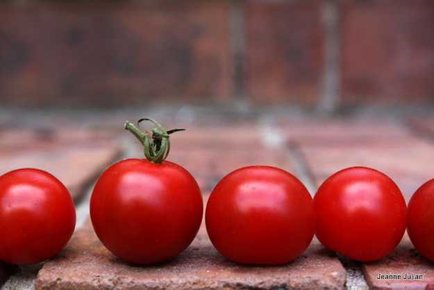varietà pomodori piccoli