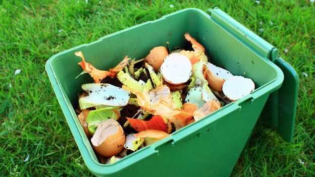 compost-cosa-mettere