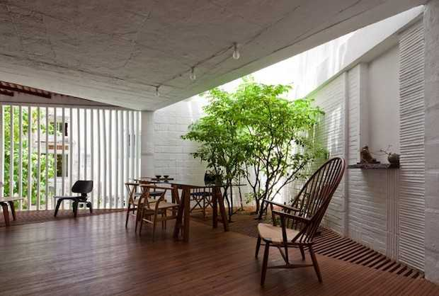 Le foto delle migliori piante da appartamento idee green for Home interior garden