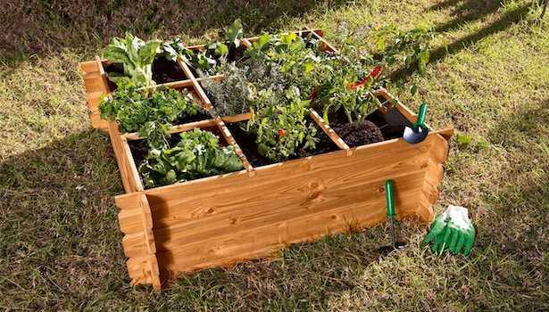 come costruire un orto rialzato idee green