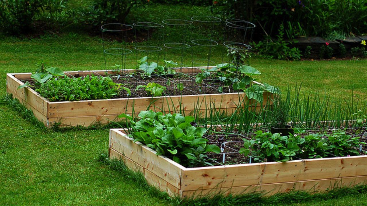 Pedana Di Legno Per Giardino come costruire un orto rialzato - idee green