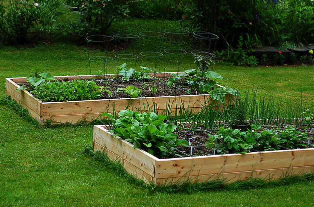 Come costruire un orto rialzato idee green for Costruire un garage su un terreno in pendenza