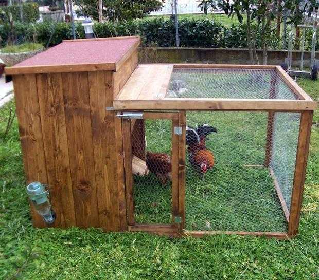 Costruire un pollaio istruzioni idee green for Recinto cani fai da te