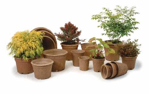 contenitori biodegradabili
