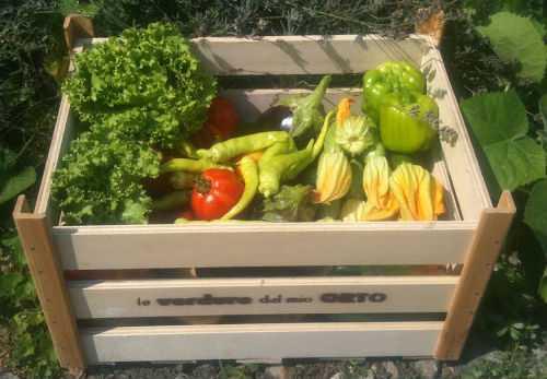 alimentazione ecologica