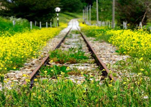 ferrovie-dimenticate