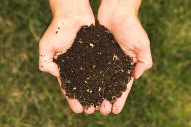 fertilizzanti da giardino