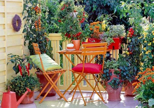 Conosciuto Come arredare un balcone con i fiori - Idee Green OL61